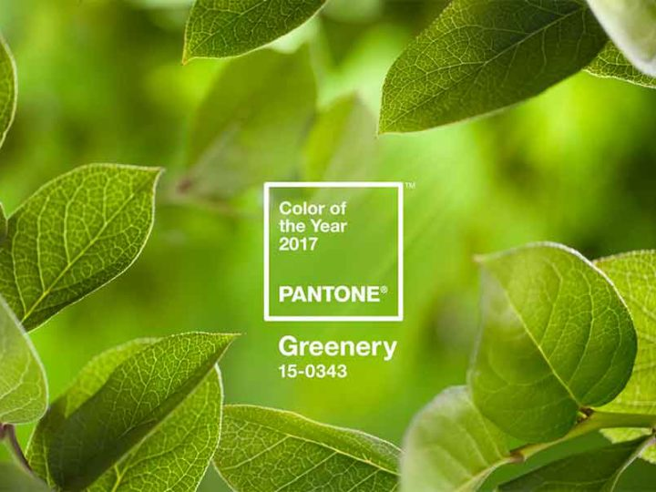 Greenery será a cor de 2017, segundo a Pantone